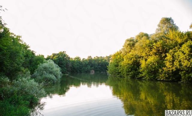 Аренда беседок у реки в лесу