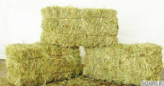 Реализация сена в тюках.  Урожай 2017 года