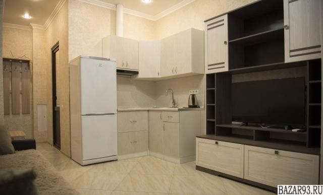Сдам квартиру посуточно 1-к квартира 25 м² на 16 этаже 19-этажного монолитного д