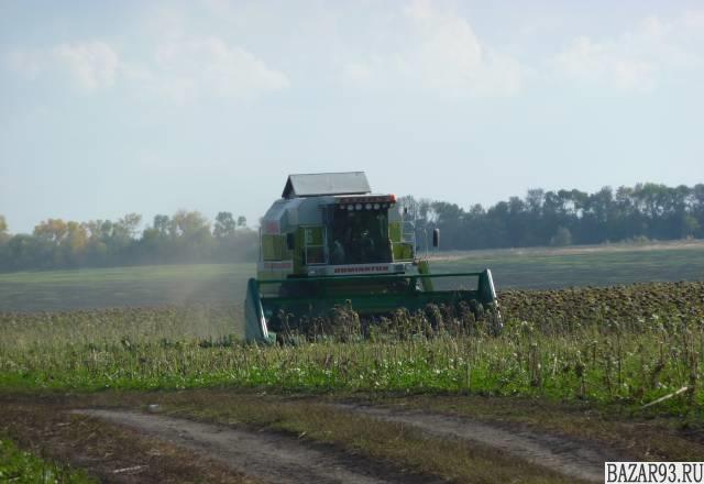 Зерновые комбаины